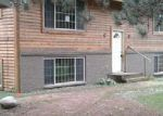 Foreclosed Home in Gilbert 55741 VERMILION TRL - Property ID: 4212621509