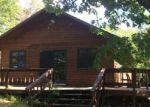 Foreclosed Home in Cook 55723 OAK NARROWS RD - Property ID: 4213696746