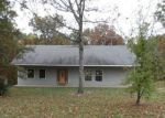 Foreclosed Home in Cadet 63630 CANNON MINES RD - Property ID: 4214903356