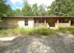 Foreclosed Home in Ebro 32437 CREWS LAKE RD - Property ID: 4215431106