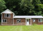 Foreclosed Home in Shandaken 12480 BROADSTREET HOLLOW RD - Property ID: 4218019544