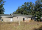 Foreclosed Home in Holton 49425 NICHOLS RD - Property ID: 4218872724
