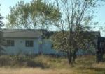 Foreclosed Home in Necedah 54646 12TH AVE - Property ID: 4218938407