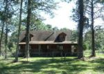 Foreclosed Home in Middleburg 32068 BROWNS RD - Property ID: 4223252456