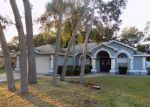 Foreclosed Home in Spring Hill 34608 VAN ALLEN WAY - Property ID: 4223258595