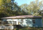 Foreclosed Home in Guntersville 35976 MORROW DR - Property ID: 4223977300