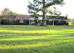 Foreclosed Home in Repton 36475 HIGHWAY 136 E - Property ID: 4223998774