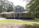Foreclosed Home in Dauphin Island 36528 LA MOTHE PL - Property ID: 4223999645