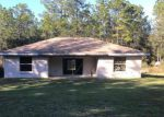 Foreclosed Home in Dunnellon 34432 SW 40TH ST - Property ID: 4225712557