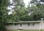Foreclosed Home in Buffalo 55313 47TH ST NE - Property ID: 4227524456