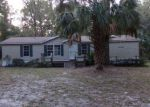 Foreclosed Home in Anthony 32617 NE 44TH CT - Property ID: 4230658148