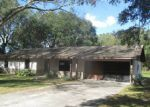 Foreclosed Home in Lakeland 33810 BONNY GLEN ST - Property ID: 4230685308