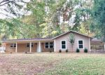 Foreclosed Home in Burnsville 38833 LAKE DR - Property ID: 4231039638