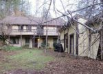 Foreclosed Home in Lakehead 96051 NATURES WAY - Property ID: 4231491629