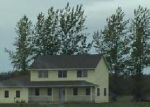 Foreclosed Home in Thief River Falls 56701 138TH AVE NE - Property ID: 4236518694