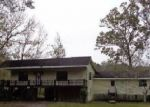 Foreclosed Home in Wewahitchka 32465 BYRD PARKER DR - Property ID: 4242723918
