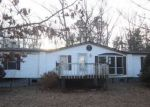 Foreclosed Home in Greenville 24440 BEARS DEN TRL - Property ID: 4244935679