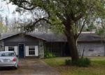Foreclosed Home in Lutz 33548 WILSON CIR - Property ID: 4254971857