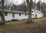Foreclosed Home in Belding 48809 GEIGER CT - Property ID: 4262562824