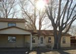 Foreclosed Home in Alamosa 81101 E 2ND ST - Property ID: 4266686335