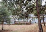 Foreclosed Home in Shingletown 96088 SKY TREE LN - Property ID: 4266766937
