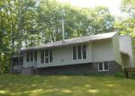 Sheriff Sale in Harrisville 48740 ELLEN DR - Property ID: 70102836281