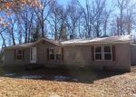 Foreclosure Auction in Alger 48610 CRANBERRY DR - Property ID: 1723040675