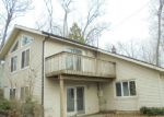 Foreclosed Home in Belding 48809 PINE RIDGE DR NE - Property ID: 3815045358