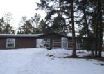 Foreclosed Home in Florissant 80816 ANDERSON RD - Property ID: 3912903196