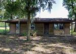 Foreclosed Home in Lithia 33547 MOCCASIN HOLLOW RD - Property ID: 4035488176