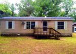 Foreclosed Home in Bitely 49309 E 17 MILE RD - Property ID: 4050021928