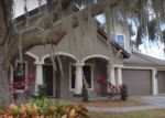 Foreclosed Home in Lithia 33547 PERSIMMON GROVE DR - Property ID: 4138165949