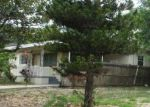 Foreclosed Home in Orlando 32808 NEWTON ST - Property ID: 4149848451