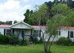 Foreclosed Home in Rich Square 27869 BLAKE DR - Property ID: 4192214999