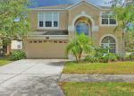 Foreclosed Home in Tampa 33647 STILL WIND DR - Property ID: 4224692964