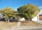 Foreclosed Home in San Elizario 79849 CASITA - Property ID: 4233019271