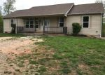 Foreclosed Home in Plato 65552 HERITAGE LN - Property ID: 4273505598