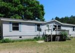Foreclosed Home in Free Soil 49411 N LA SALLE RD - Property ID: 4278479665