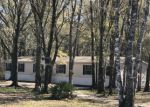 Foreclosed Home in Hastings 32145 PALATKA BLVD - Property ID: 4280664269