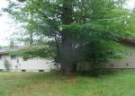 Foreclosed Home in Lake Nebagamon 54849 E 3RD ST N - Property ID: 4287649977