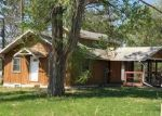 Foreclosed Home in Hill City 55748 LAKE AVE W - Property ID: 4288701539
