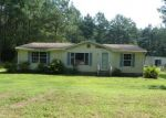 Foreclosed Home in Eden 21822 STEVENS RD - Property ID: 4290826589