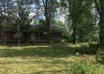 Foreclosed Home in Eagle 48822 S WRIGHT RD - Property ID: 4292891636