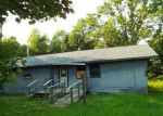 Foreclosed Home in Danbury 54830 COUNTY ROAD F - Property ID: 4295734975