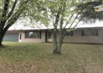 Foreclosed Home in Bitely 49309 WARNER AVE - Property ID: 4301482940