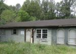 Foreclosed Home in Bassett 24055 SUNNYBROOK CIR - Property ID: 4303740244