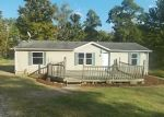 Foreclosed Home in Corning 43730 PORTIE FLAMINGO RD SE - Property ID: 4307161708