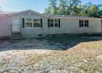 Foreclosed Home in Morley 49336 BROOKS LN - Property ID: 4307302738