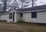 Foreclosed Home in Rodney 49342 N HORSEHEAD LAKE DR - Property ID: 4307381566