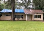Foreclosed Home in Marianna 32446 DECATUR ST - Property ID: 4307911515